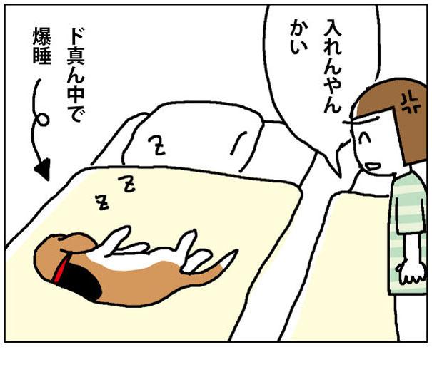 43wa_01