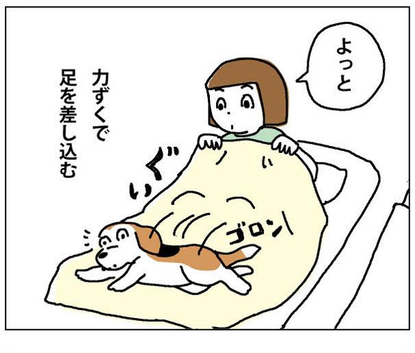 43wa_02