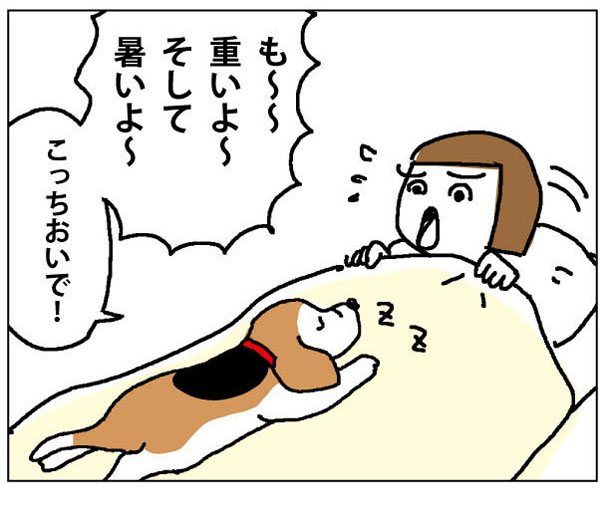 43wa_05