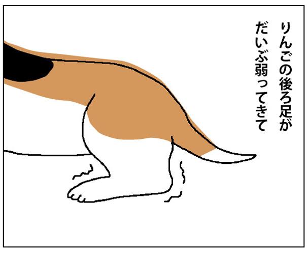 45wa_01