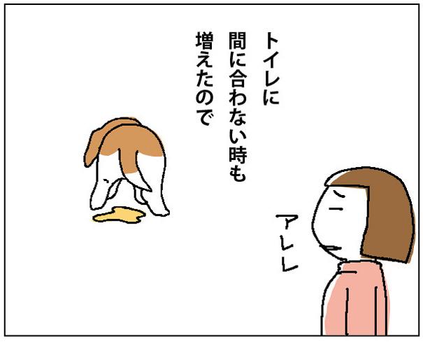 45wa_02