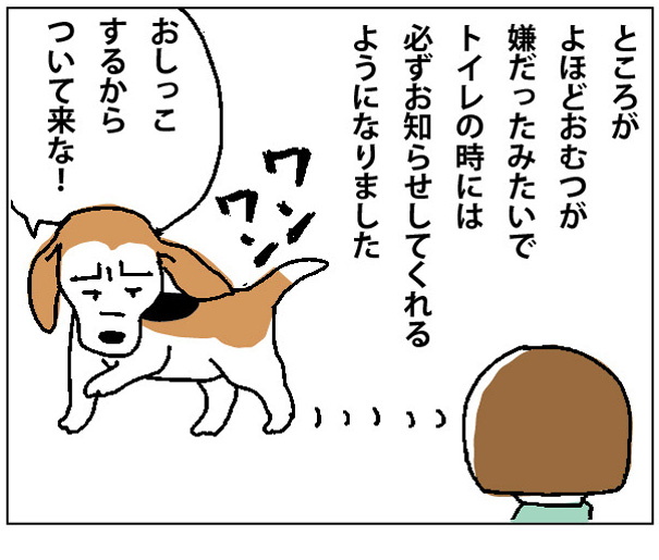 45wa_08