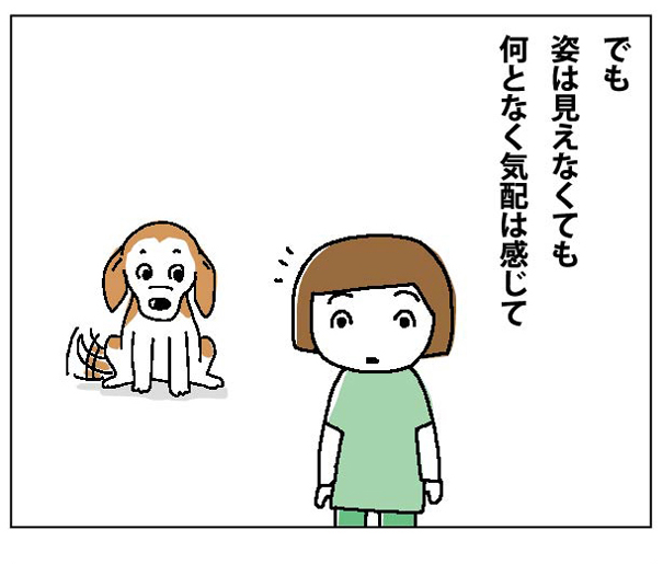 47wa_04