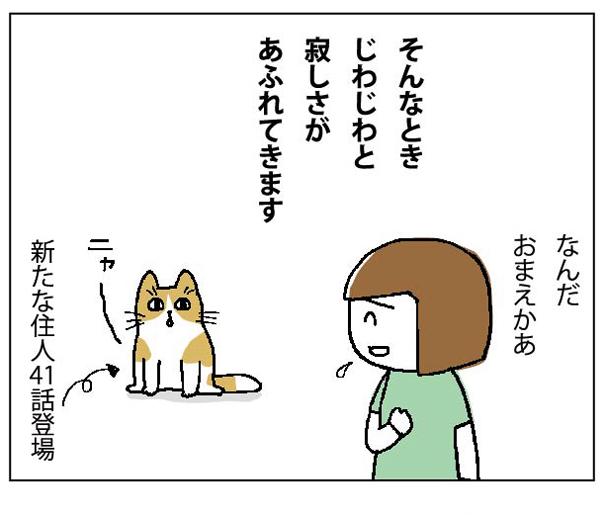 47wa_06