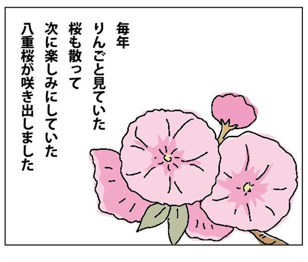 47wa_08